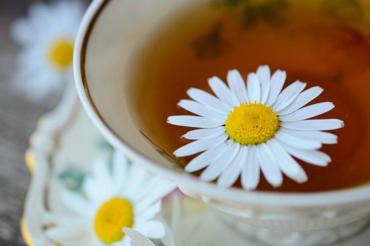 Herbaty ziołowe i owocowe